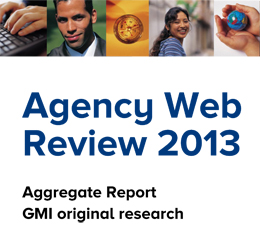 Agency Web Review 2013 Aggregate Report